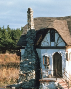The project was finished in this photo, but it gives you an idea of how the chimney and entrance looked together.