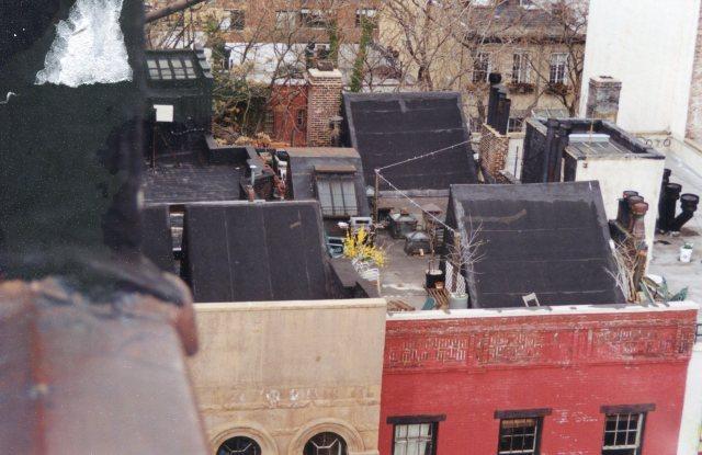 NYRooftop111.jpg